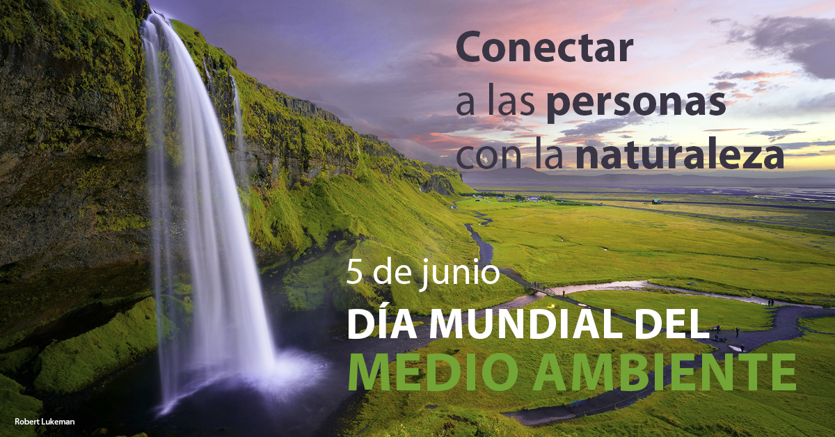 Azvi_Día_Mundial_MedioAmbiente